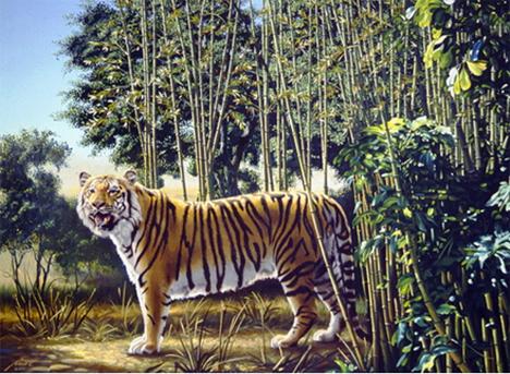 Versteckter Tiger