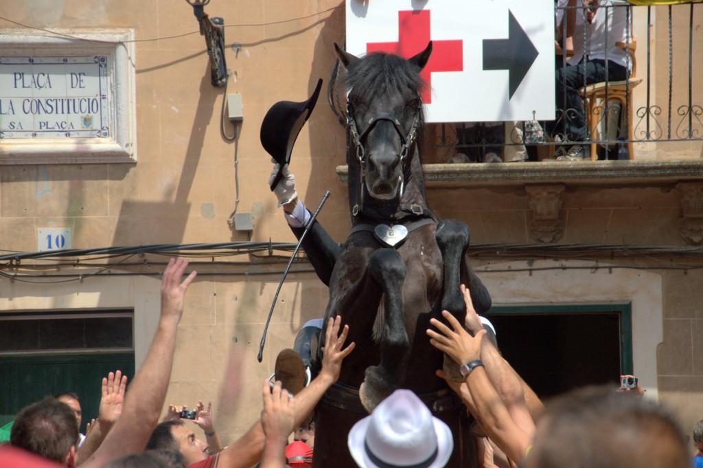 Pferd mit Armen