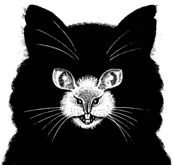 Katzenmaus