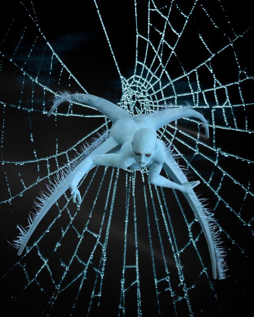 Spinne oder Frau