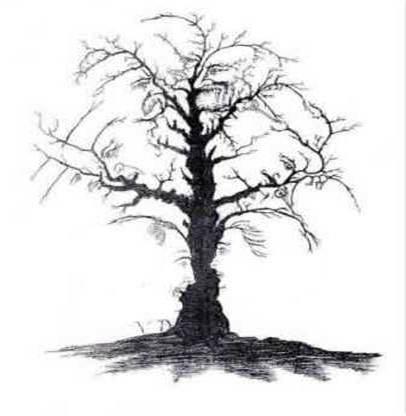 Dyan´s Tree