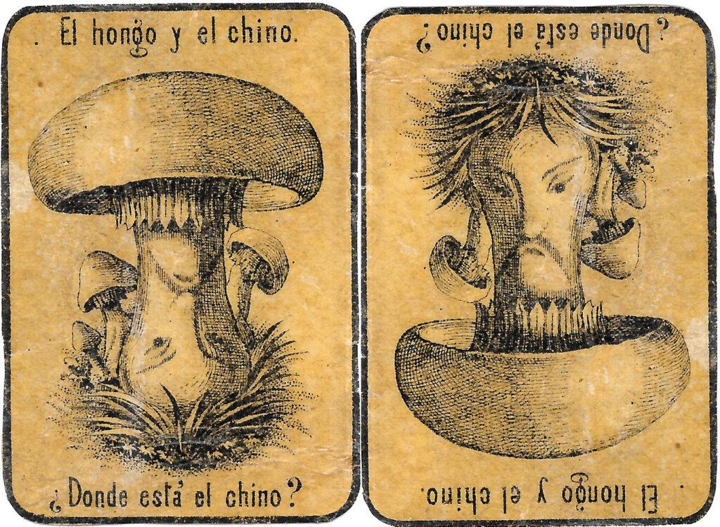 Pilz oder Chinese?