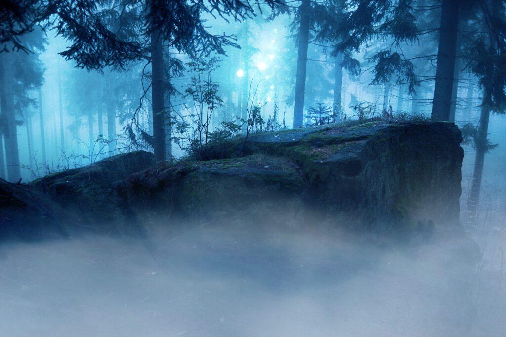Felsen/Wald
