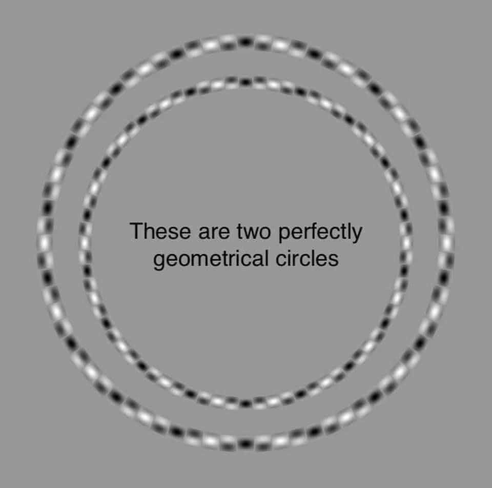 Perfekte Kreise